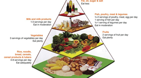 The Malaysian Food Pyramid